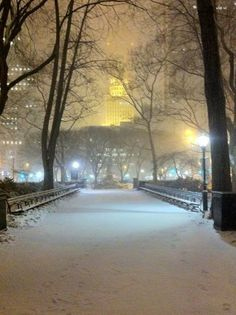 NYC. It's a cold, silent night at central park  Would love to walk thru Central park in the snow!