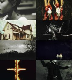 """FAKE TV SHOW MEME - southern gothic  BONE HOLLOW """"In this family you don't get nothin' without paying in blood."""" Ophelia Adams has magic. For a hundred and fifty years her family has lived in the small Southern town of Bone Hollow,practisingtheir craft and hiding their gifts from the close knittownspeople. But all magic has a price, and for the Adams it's the curse that has haunted them for generations: every time a new child is born,someoneelse in thefamily must die…"""