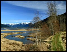 This photo from British Columbia, Western is titled 'Pitt Wetlands'. Fraser Valley, British Columbia, North America, Canada, River, Mountains, Nature, Outdoor, Beautiful