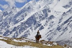 Tamang man riding his horse in the Upper Langtang valley, Nepal