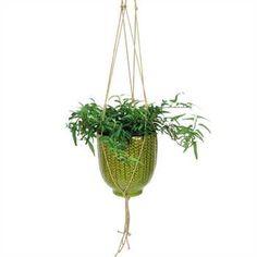 COYNES - Knit Hanging Pot, Large - Green
