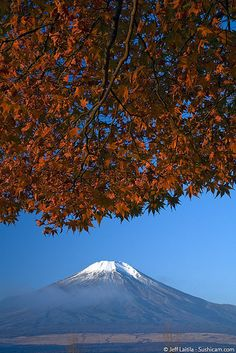 Momiji and Fuji-san by Sushicam, via Flickr