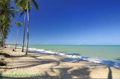 Resultado de imagem para praia de coqueiral