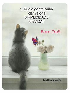 Bom Dia bonitas imagens GIF - ImagensBomDia.net Good Afternoon, Good Morning Good Night, Good Morning Quotes, Animals And Pets, Funny Animals, Happy Weekend Images, Sweetest Day, Cute Gif, Humor