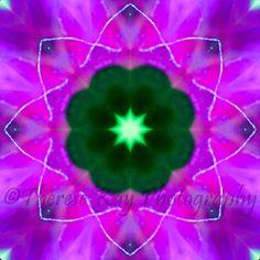 Mandala created from original image www.ThereseKayPhotography.com