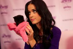 Katy Perry with a cute kitty!