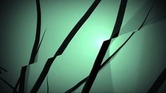 City Wild Life by gur margalit   Channel Identity school project  mentor: Eran Stern