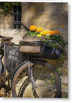 Bicycle parked in the Cotswolds, Gloucestershire, England. © Brian Jannsen Photography Idea for porch Velo Retro, Velo Vintage, Vintage Bicycles, Bicycle Basket, Old Bicycle, Old Bikes, Bike Baskets, Bicycle Cards, Tricycle
