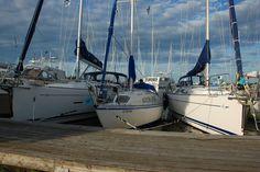 Mainetta - 107655679714607722855 - Picasa Web Albums Sailing Ships, Albums, Maine, Boat, Picasa, Dinghy, Boats, Sailboat, Tall Ships