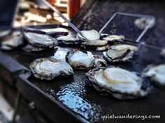 Cape to Cape - Abalone on the BBQ - from Cherina at Quiet Wanderings Croatian Islands, Cambodian Food, Learn To Cook, Grape Vines, Cape, Track, Hiking, Food And Drink, River