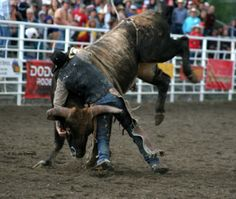 Rodeo- Not for the faint of heart!!!