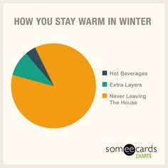 Free and Funny Charts And Graphs Ecard: How You Stay Warm In Winter Create and send your own custom Charts And Graphs ecard. Sarcastic Humor, Funny Jokes, Hilarious, Funny Pie Charts, Life Problems, Charts And Graphs, My Philosophy, Truth Hurts, Funny Cards