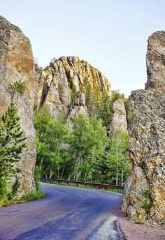 Black Hills of South Dakota Oh The Places You'll Go, Great Places, Places Ive Been, Beautiful Places, Places To Visit, Sturgis 2015, Sturgis South Dakota, Spearfish Canyon, Custer State Park