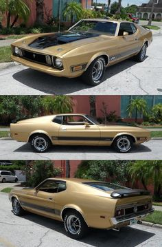 Ford Mustang Mach 1 1973.