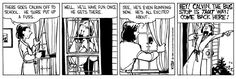 THE DAILY CALVIN: Calvin and Hobbes, September 6, 1988 - See, he's even running now. He's all excited about... HEY! CALVIN, THE BUS STOP IS THAT WAY! COME BACK HERE!