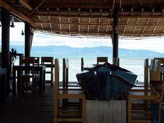 Fish At Thips Koh PhanganFish