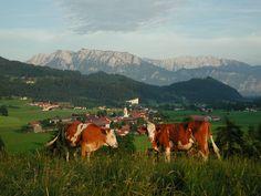 Wilder and Zahmer Kaiser in Tirol, Austria Tirol Austria, Visit Austria, Heart Of Europe, Central Europe, Fairy Land, Free Travel, Small World, Maids, Plan Your Trip