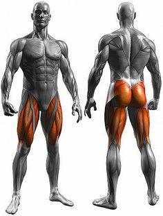 Allenamento per l'Incremento della Massa Muscolare delle Gambe Esclusivamente con Esercizi a Corpo Libero
