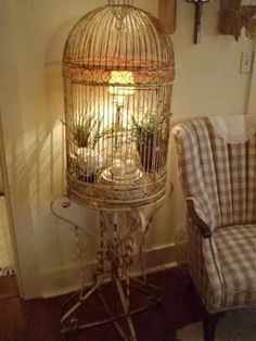 Reperposed birdcage