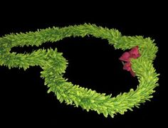 Hawaiian Green Rose Flower Lei