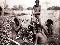 Men cutting up kangaroo Aboriginal History, Aboriginal Culture, Aboriginal People, Aboriginal Art, Indigenous Education, Indigenous Tribes, Stone Age People, Australian Aboriginals, Edward Curtis