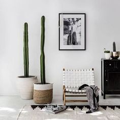 This family room makeover has a mid-century modern vibe that's comfortable, welcoming and totally kid-friendly. The styling is by Alex Decoration Inspiration, Room Inspiration, Interior Inspiration, Decor Ideas, Home Design, Interior Design, Interior Styling, Cute Dorm Rooms, Cactus Y Suculentas