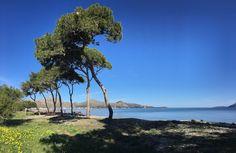 Llenaire Beach, North Mallorca beach guide