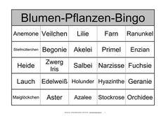 bingo spiel fur demenzkranke