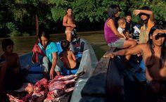 Como muitos waoranis atuais, estas duas famílias combinam o velho e o novo. Voltando pra Bameno, sua comunidade no rio Cononaco, levam o produto de uma caçada tradicional: pecari, macaco e veado. Mas as roupas e os barcos vêm de fora
