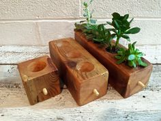 Succulent Planter Wood Cube Choose Your Size by HAMMERHEADdesigns