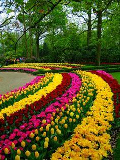 Keukenhof Gardens - Netherlands