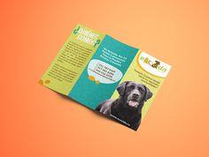 Brochure para fundación de animales