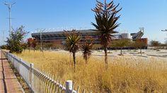 Verge landscape to Peter Mokaba Stadium, Polokwane South Africa