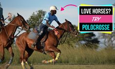 Do you love horses? Have you joined our Horse Management Volunteer Project? Then why not combine your love for horses with Polocrosse? Horse Riding, Management, Training, Horses, Park, Sports, Top, Animals, Hs Sports