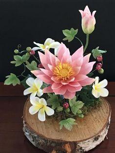 The lotus by Nalini Driessen