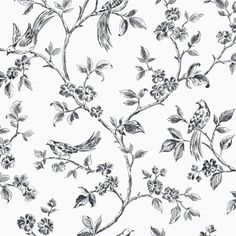 Ray Black Bird Trail Brewster Wallpaper Wallpaper Brewster Black & Whites Birds Wallpaper Floral & Plants Wallpaper Kitchen Wallpaper, Non Woven, Easy to clean , Easy to wash, Easy to strip Toile Wallpaper, Plant Wallpaper, Vinyl Wallpaper, Wallpaper Samples, Wallpaper Roll, Peel And Stick Wallpaper, Pattern Wallpaper, Paintable Wallpaper, Feature Wallpaper