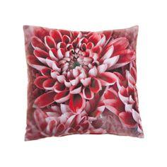 : Eems Arnhem Throw Pillows, Bed, Toss Pillows, Cushions, Stream Bed, Decorative Pillows, Beds, Decor Pillows, Scatter Cushions