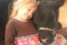 Petogodišnja devojčica je odlučila da dovede kući novog ljubimca. To uopšte ne bi bilo čudno da ljubimac nije - tele! - Dobre priče | Dobre priče