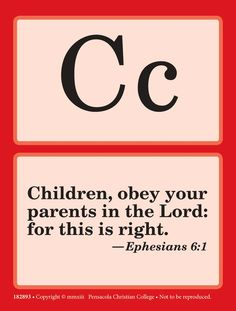 23 Laminated Book of John Bible Verse Flashcards.