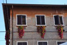 Fräulein Anker: Italien, Gardasee