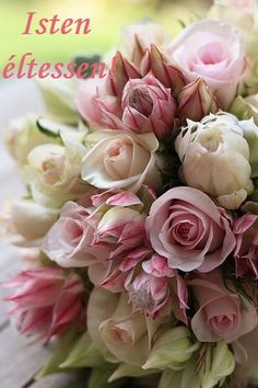 Clustered posy of pale pink roses, pink and white blushing brides, dusty miller foliage. Amazing Flowers, Beautiful Roses, Beautiful Gardens, Pink Flowers, Beautiful Flowers, Love Rose, Flower Backgrounds, Flower Power, Floral Arrangements