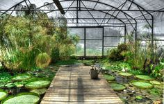 Beautiful Botanical Gardens in the. Best Botanical Gardens in the USA :: famous gardens in Best Botanical Gardens in the USA :: famous gardens in America Winter Greenhouse, Build A Greenhouse, Greenhouse Gardening, Greenhouse Ideas, Gardening Books, Gardening Tips, Most Beautiful Gardens, Amazing Gardens, Botanical Gardens Near Me