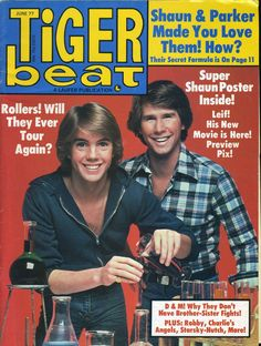 The Hardy Boys - My first loves!   Tiger Beat 1977
