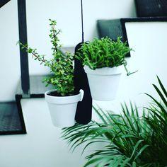 Plante ophæng - Kan hænge både inde og ude. Fås i hvid, sort og natur
