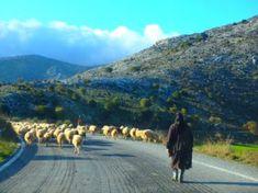 WANDERN AUF KRETA IM WINTER Mykonos Greece, Crete Greece, Athens Greece, Holidays In September, November, Hiking Routes, Greece Holiday, Greece Islands, Greece Travel