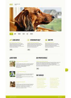 Шаблон TM45579 Тип: Шаблоны WordPress $75