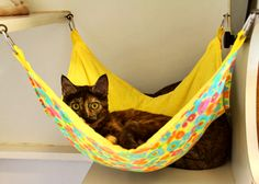 This is a basic hammock comfortable for your cat and attractive in your house. With these lively colors the pet hammock will be a nicely decorative piece too. Also if you are passionate it can be a very easy DIY project. Diy Cat Hammock, Hammock Ideas, Baby Hammock, Cat Cages, Cat Enclosure, Cat Room, Animal Projects, Diy Projects, Diy Bed