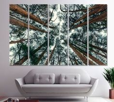 A0 A1 A2 A3 A4 Beautiful Landscape Bamboo Trees Large Poster Wall Art Print
