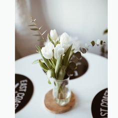 White Tulips, My Photos, Blog, Place Card Holders, Photo And Video, Instagram, Blogging