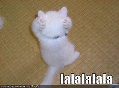 lolcats-funny-picture-lalalalala.jpg